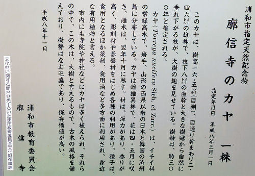 170902urawa65.jpg
