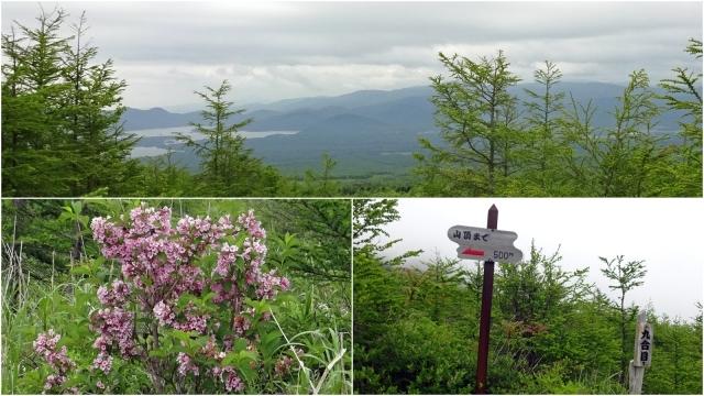 36駒ヶ岳登山