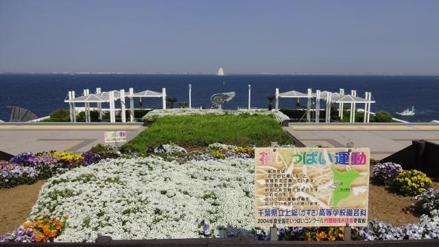 8花いっぱい運動花壇と排気塔遠望
