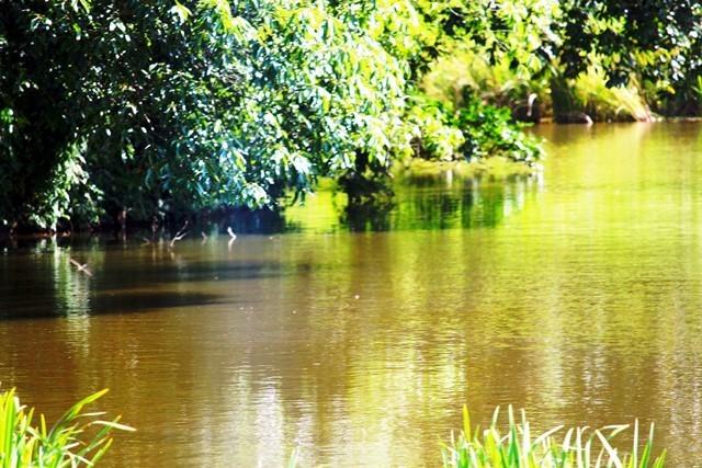 まがたま池