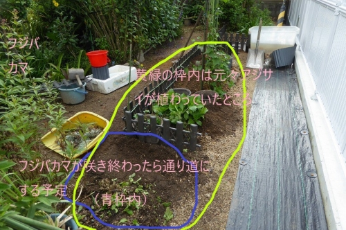 春に向けて庭の改造中