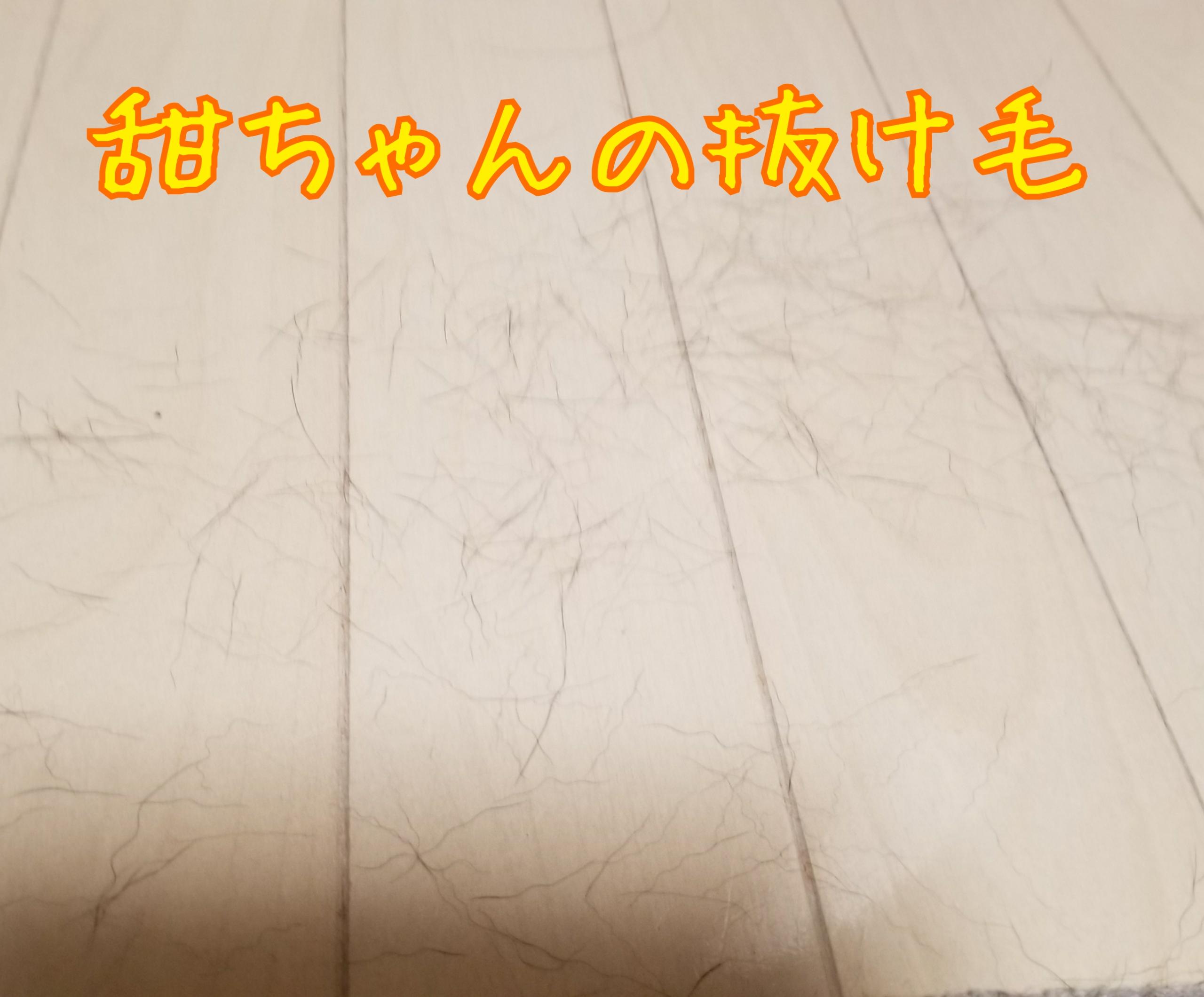 20170811071402543.jpg