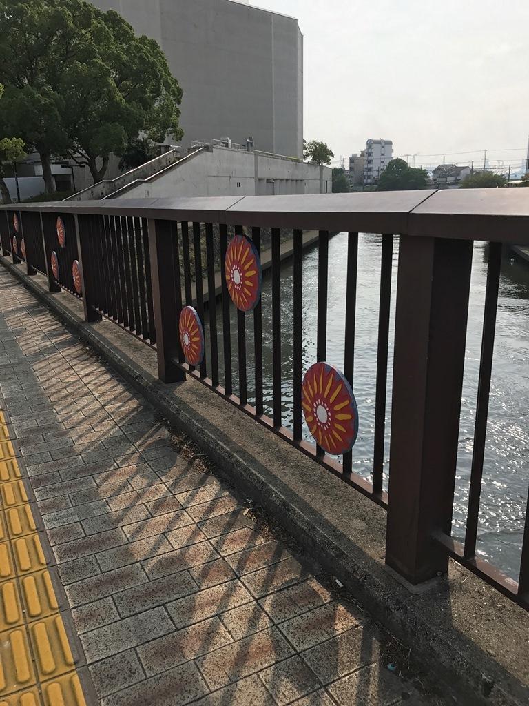 紀ノ川割れ目2