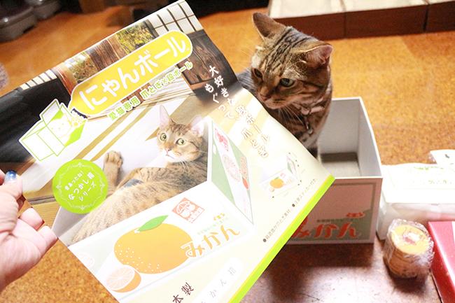 blog_000010059.jpg