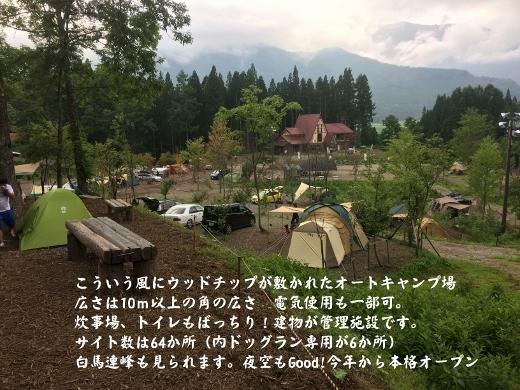 8_11ワサビ園オートキャンプ場 (1) (520x390)