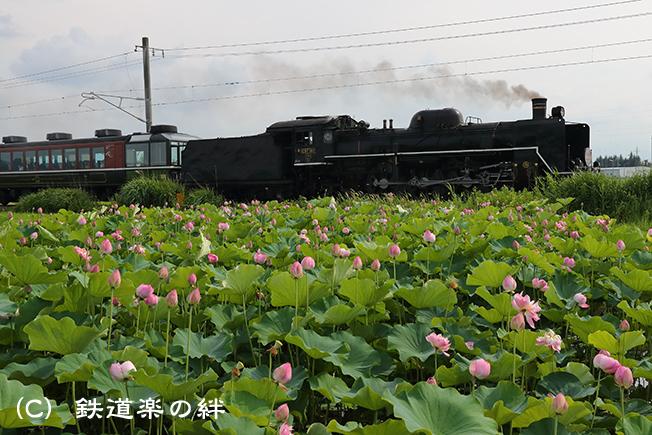 20170715会津若松021DX2