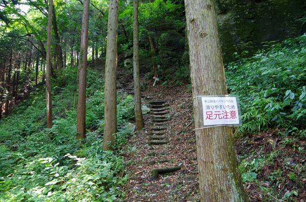 釜伏山と登谷山05