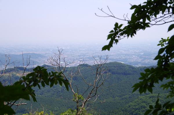 釜伏山と登谷山16