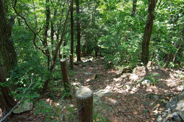 釜伏山と登谷山19