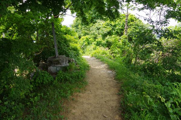 釜伏山と登谷山35