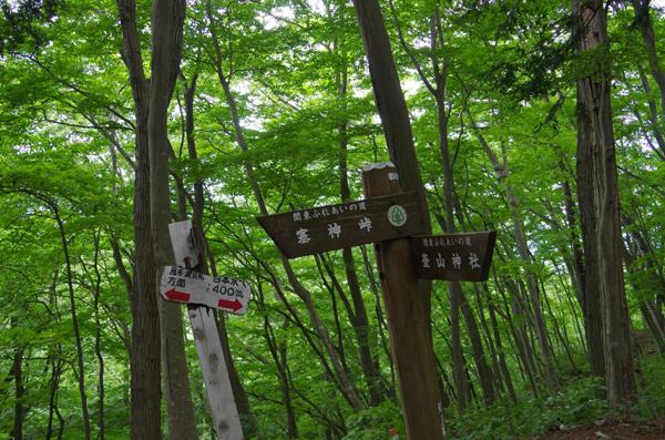 釜伏山と登谷山39