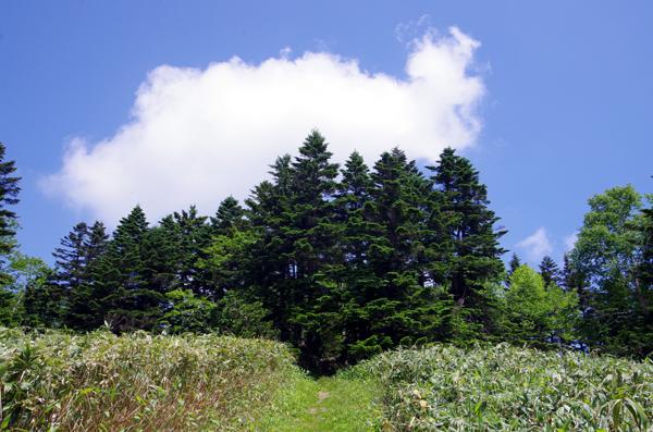 三壁山44