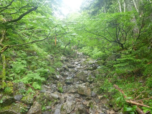 s05静高平への登り