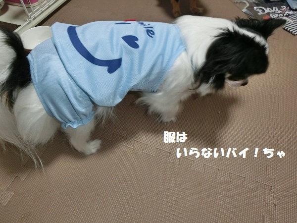 CIMG2108服3