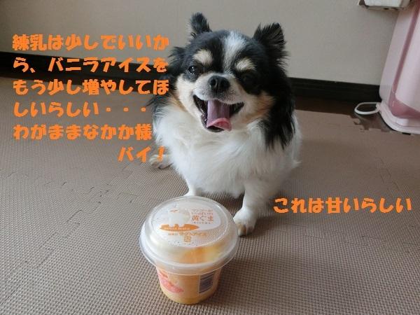 CIMG2148wagamama.jpg