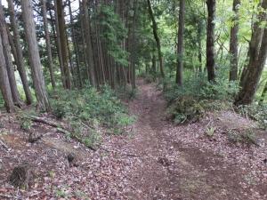 籾井城/04登山道