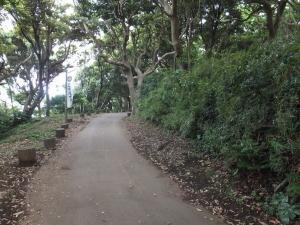 新井城/遊歩道