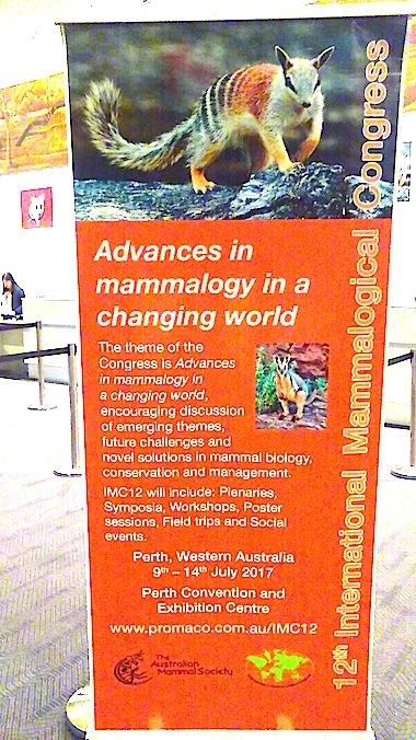 オーストラリア西部で開催された国際哺乳類学会