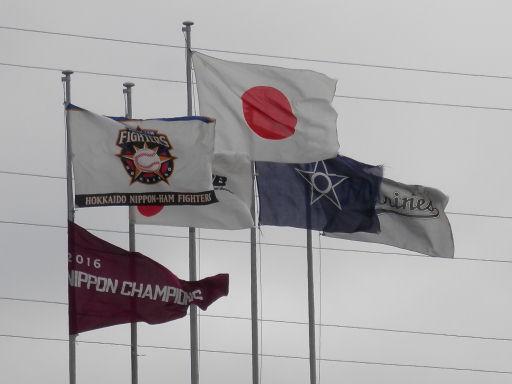 釧路チャンピオンフラッグ
