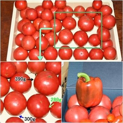 トマトとジャンボピーマン