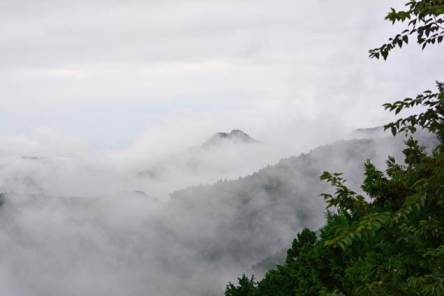 雲海 DSC_0006