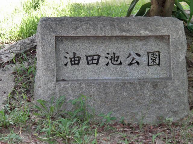 油田池公園1708 (1)
