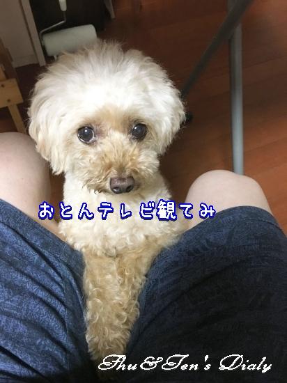 001aIMG_6924.jpg