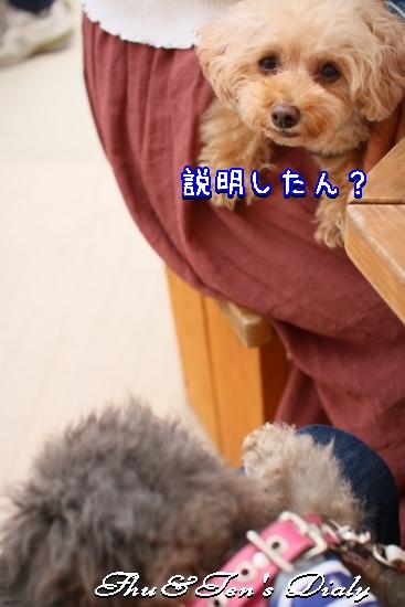 008aIMG_5852.jpg