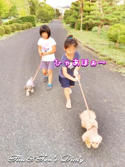 009aIMG_7802.jpg