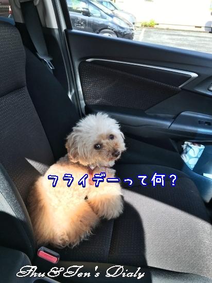 010aIMG_7067.jpg