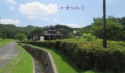201708 丸太村