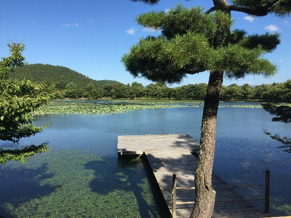 daikakugi-kyoto-060.jpg