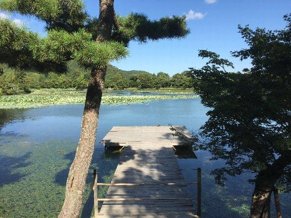 daikakugi-kyoto-063.jpg