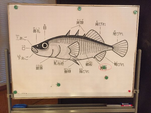 itoyonosato-oono-012.jpg