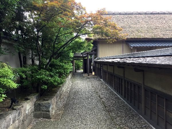 youkoukani-fukui-004.jpg