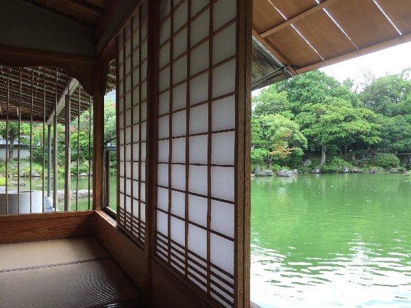 youkoukani-fukui-014.jpg