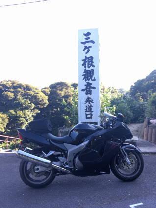 紫陽花020