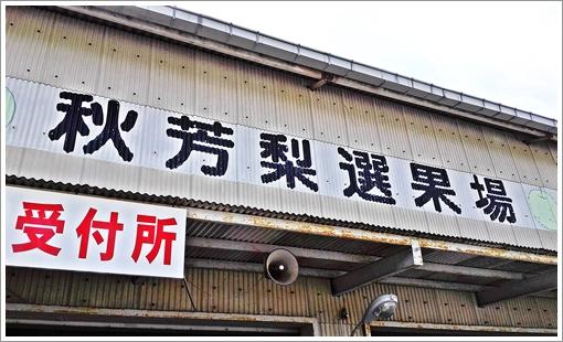 2017shuhonashikgari01.jpg