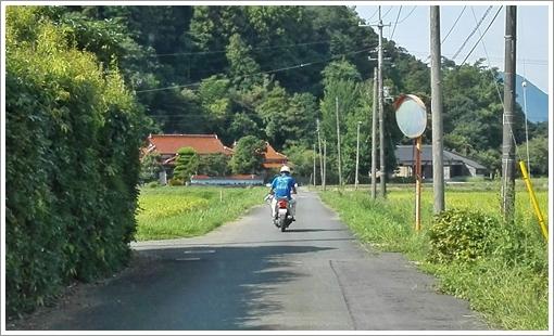2017shuhonashikgari05.jpg