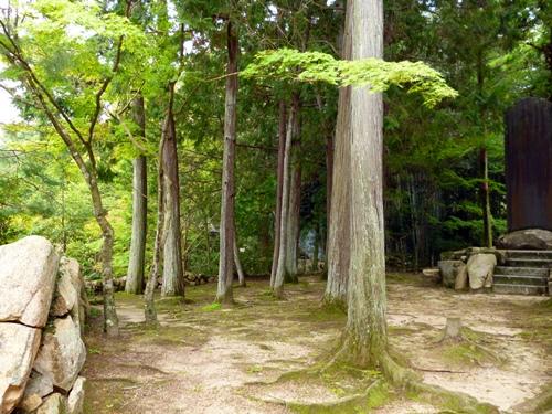 9-19日本の美