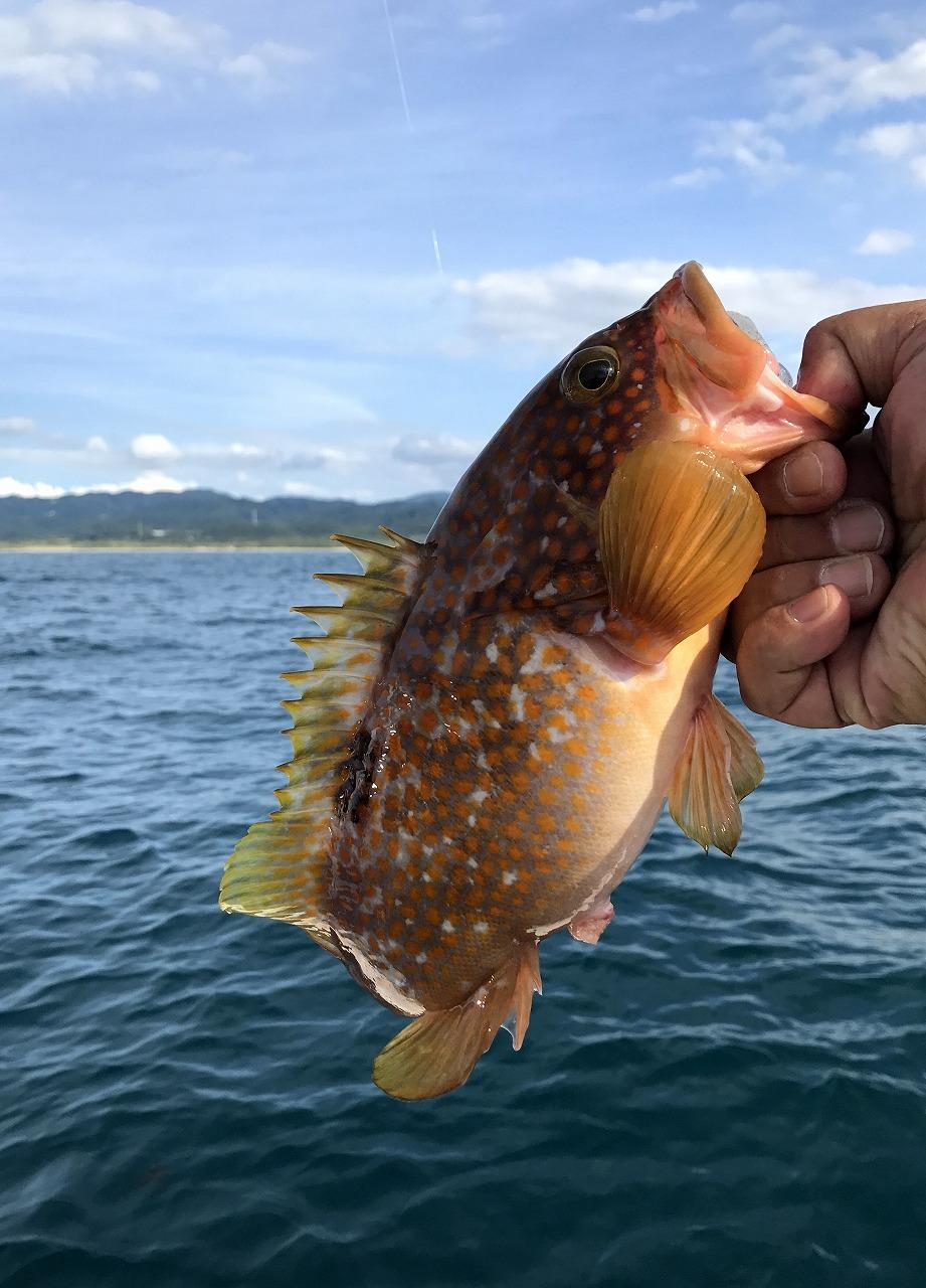20170819-Fishing-I04.jpg