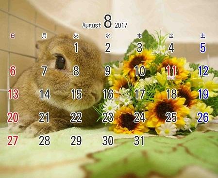 2017年8月卓上型カレンダー