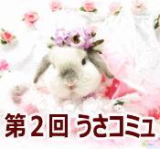 2_usakomyu.jpg