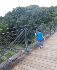 橋渡るよ~
