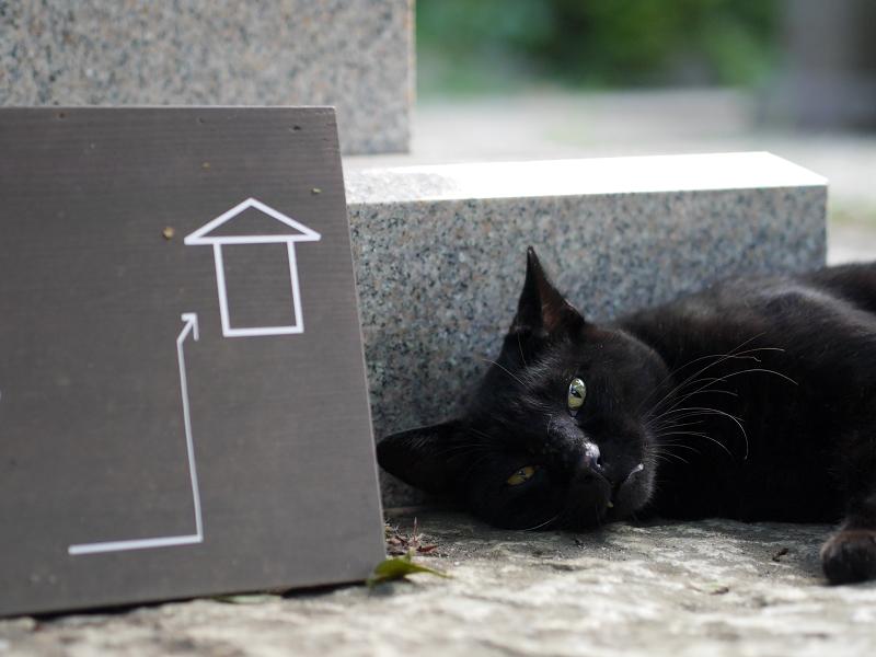 御影石と黒猫
