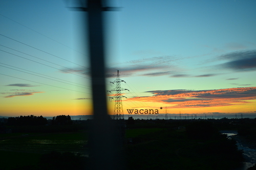 WCN_8905.jpg