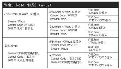 WN52血統構成表800