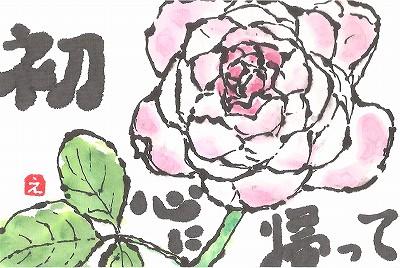 薔薇  初心 001