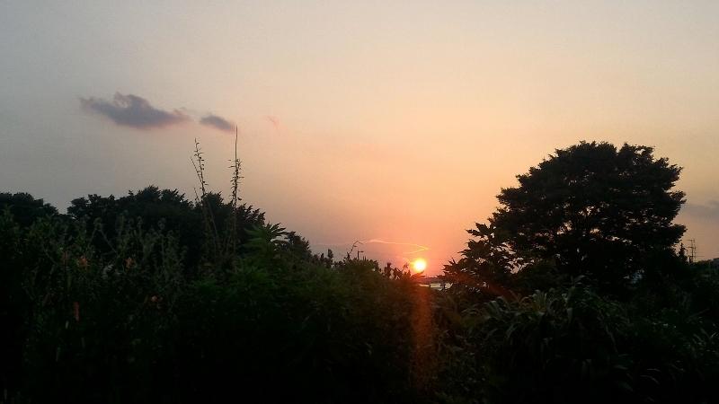 舎人の夕日