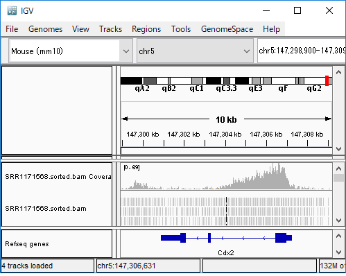 FI-SC_chip-seq_Cdx2.png